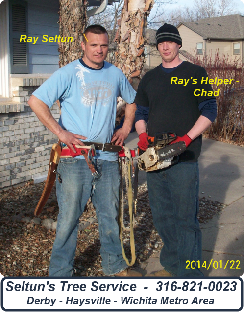 Ray Seltun (Seltun Tree Trimming) with Helper Chad